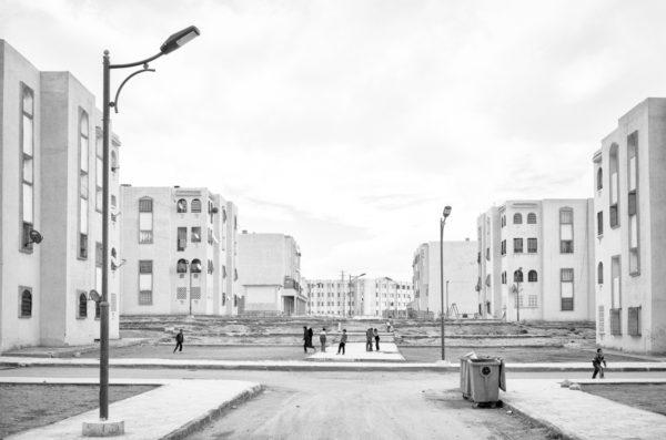 Deglet Nour - Tytus Grodzicki - CENTRALA (2)